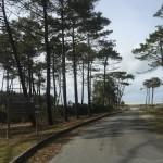 Plan d'accès & Histoire de La Dune 14